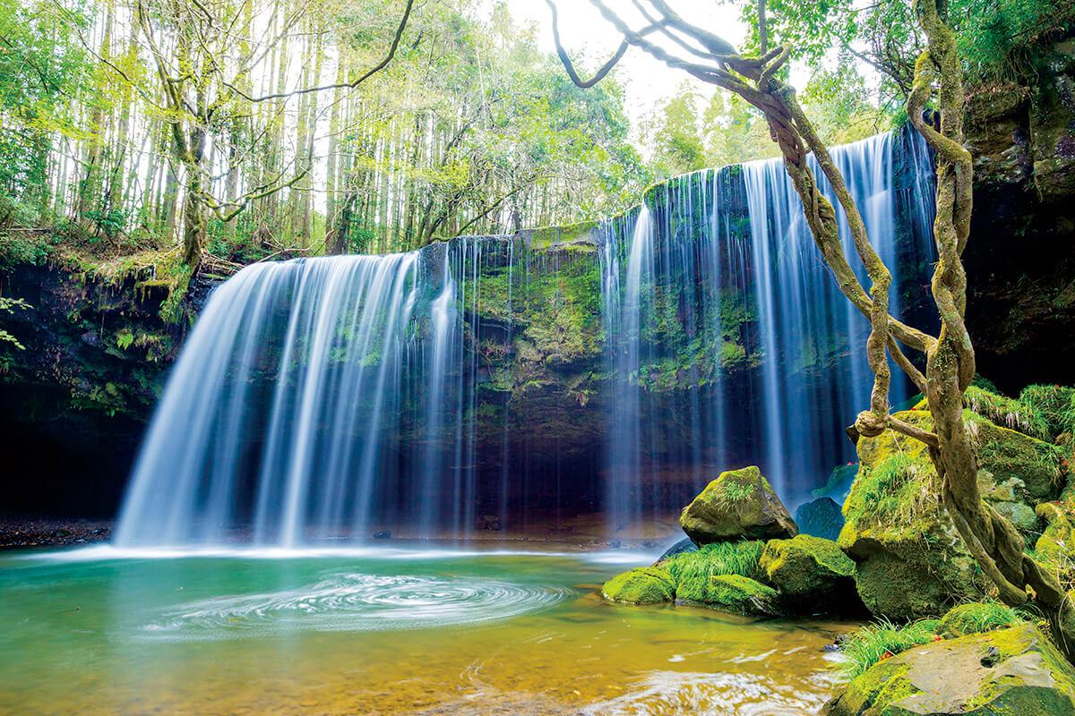 鍋ヶ滝(新緑)