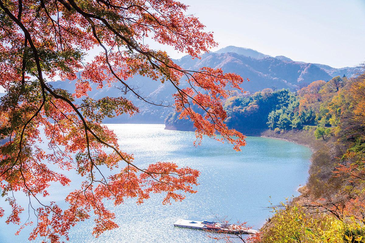 猿ヶ京温泉 赤谷湖