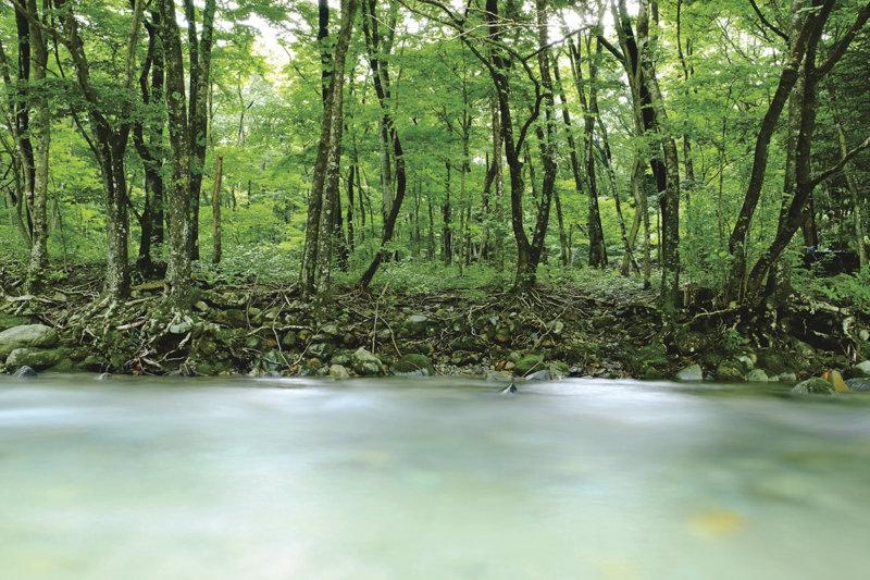 栃木県那須塩原市の「木の俣渓谷」で清流で涼を感じるリラックスタイムを