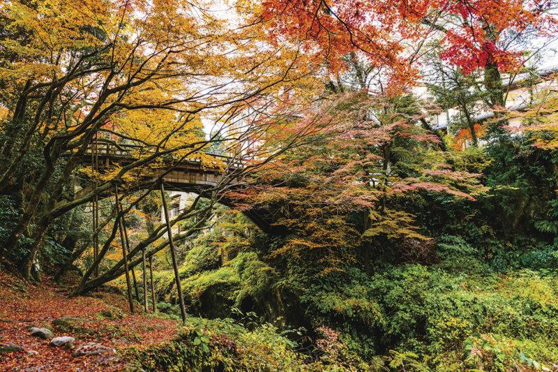 北陸随一の渓谷美! 石川県の名湯・山中温泉の風景を楽しもう