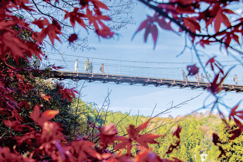 つり橋や清流が彩る絶景スポット! 岐阜県・大垣市の「多良峡」で紅葉狩りを楽しもう!