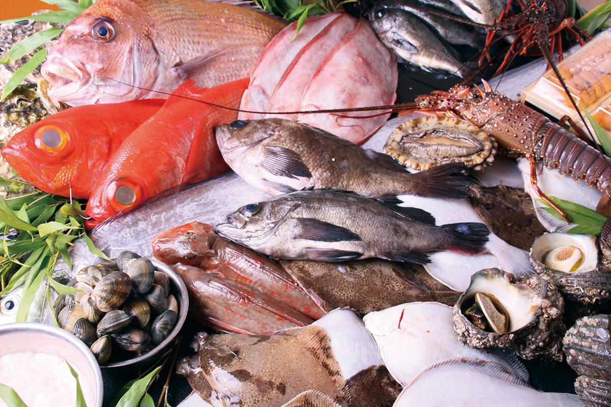 市場 魚介類(イメージ)