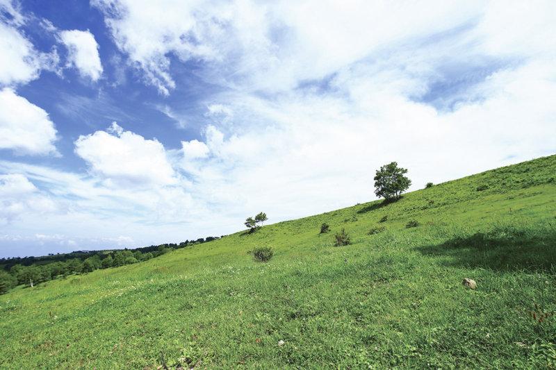 長野県の菅平高原でアクティブに過ごそう!! 冬はスキー、夏はトレッキングが楽しめる!