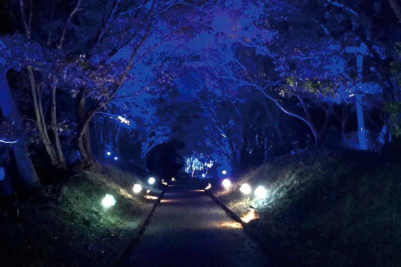 兵庫県・淡路島のエンタメ施設「ニジゲンノモリ」はアトラクションもピクニックも楽しめる!