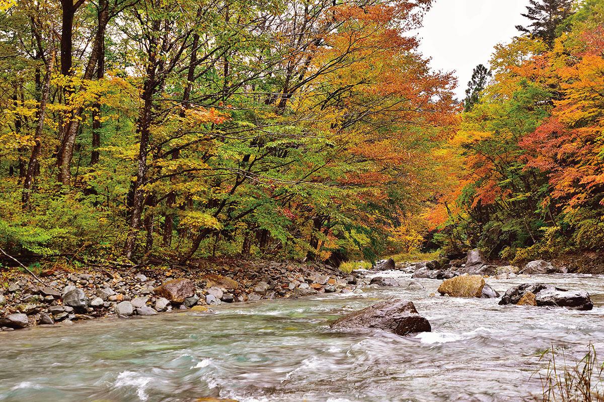 那須の清流・木の俣川 秋の景色