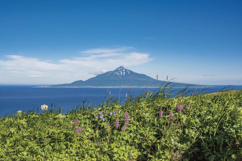 北海道の大自然に癒やされたい! 最果ての離島「利尻島・礼文島」ってどんなところ?