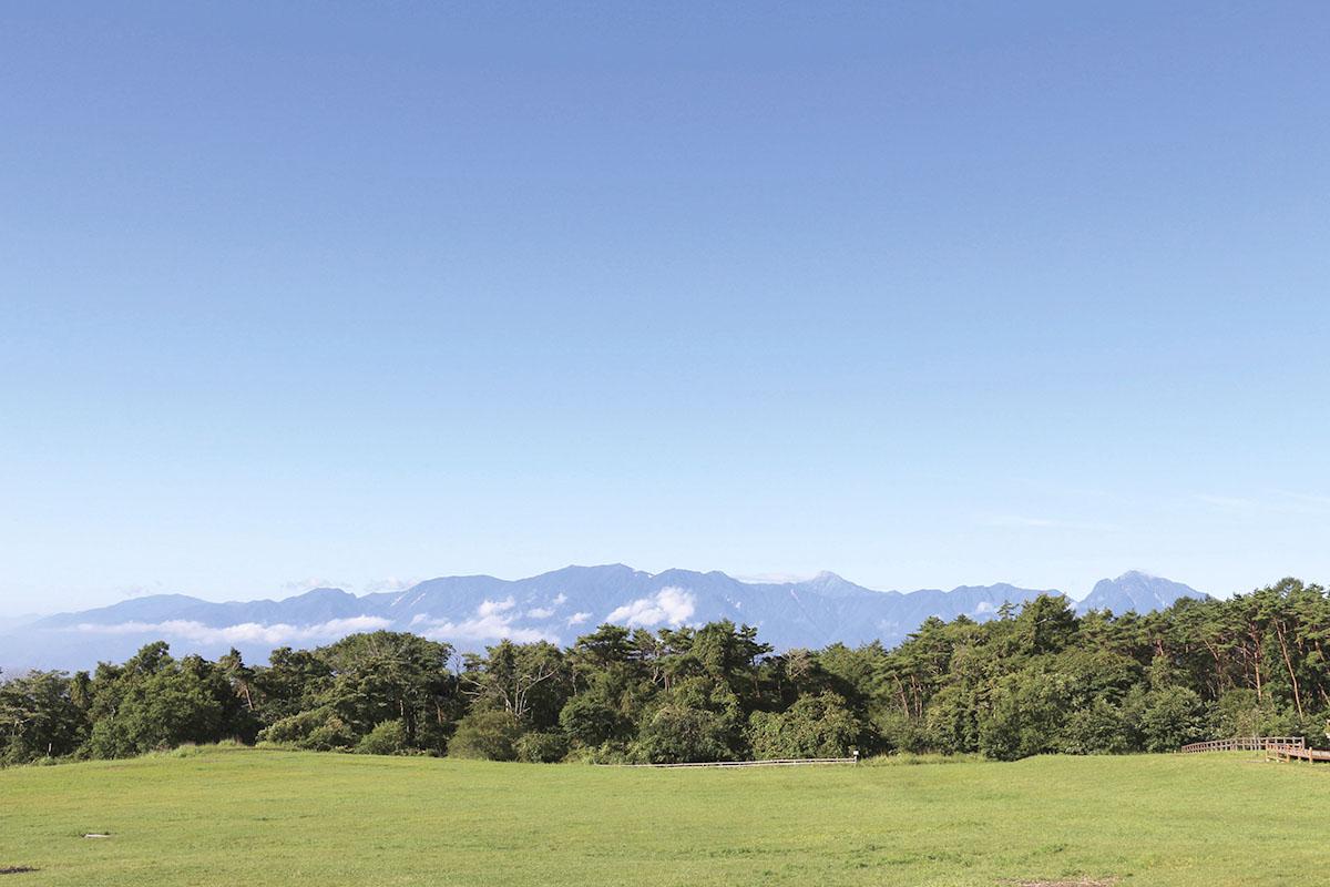 アルプスを臨む高原牧場(イメージ)