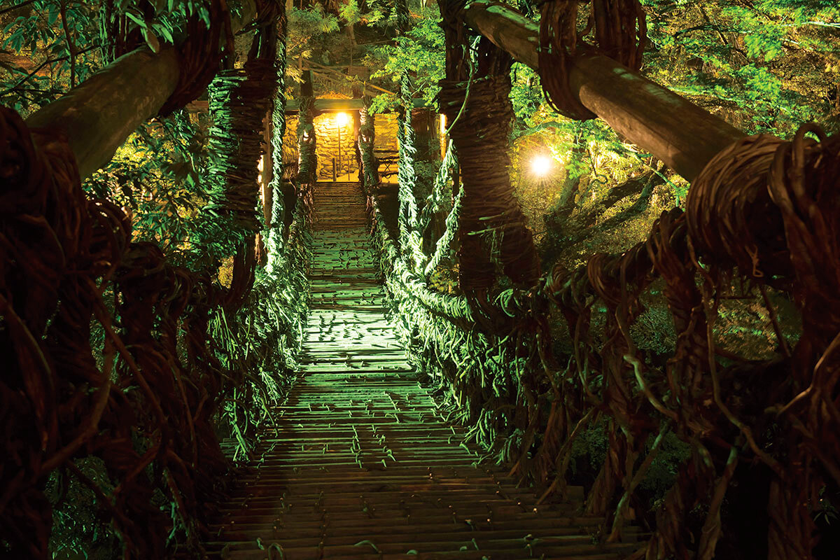 祖谷のかずら橋のライトアップ
