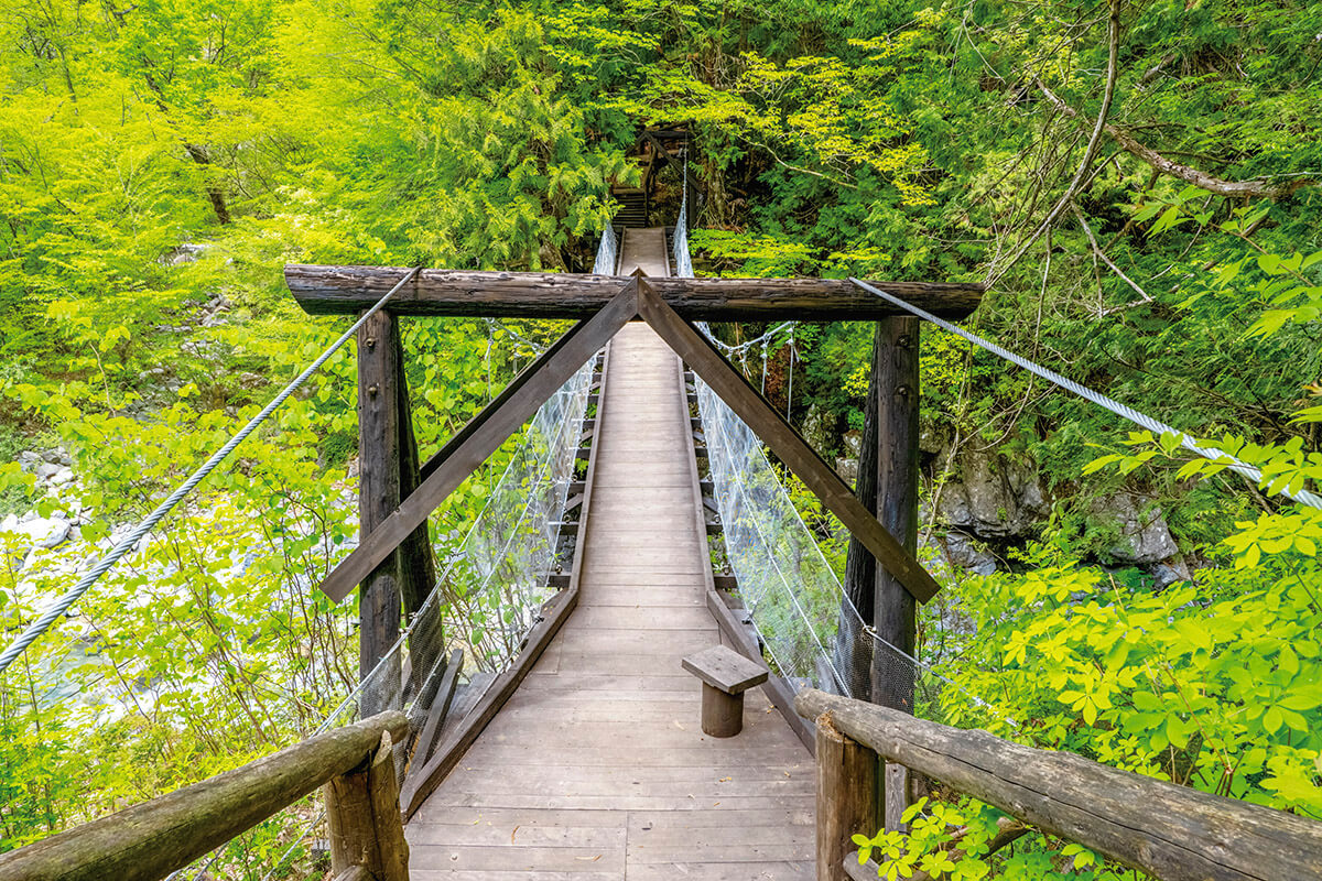 阿寺渓谷 つり橋
