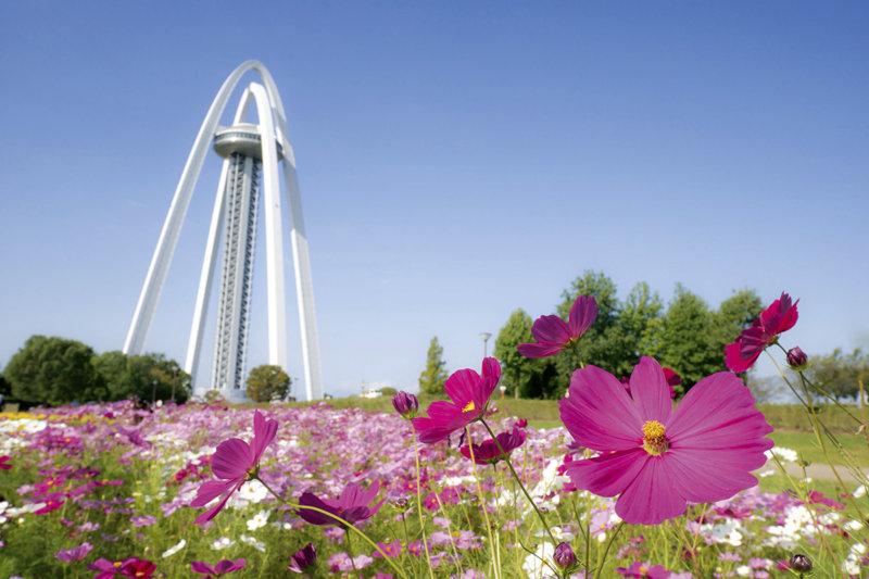 日本で一番大きい国営公園! 「木曽三川公園」で季節の花やイルミネーションを楽しもう
