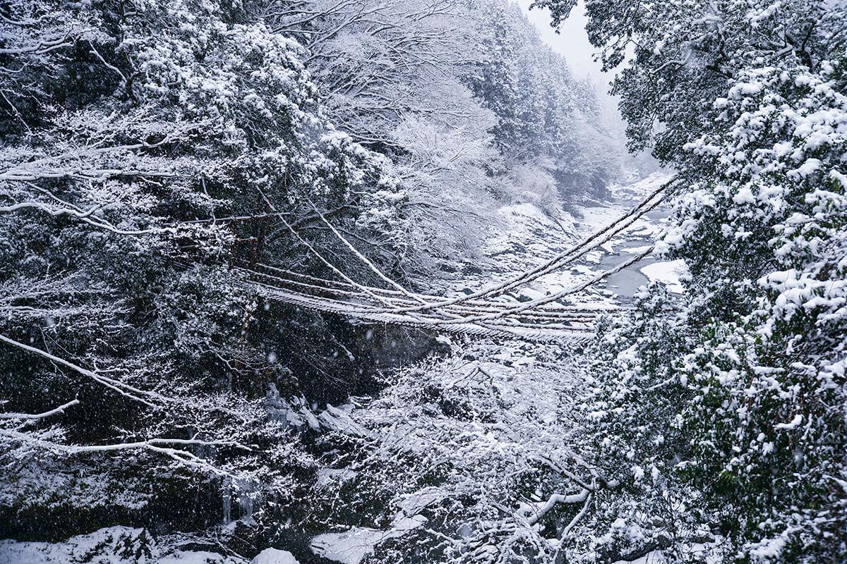 冬の祖谷のかずら橋