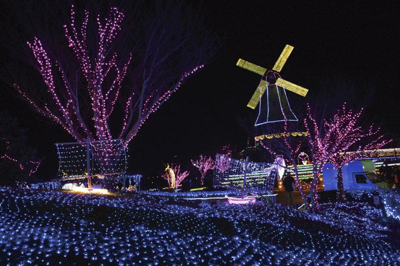 茨城県の霞ヶ浦総合公園へ行こう!! 冬のイルミネーションや季節の花が見どころ