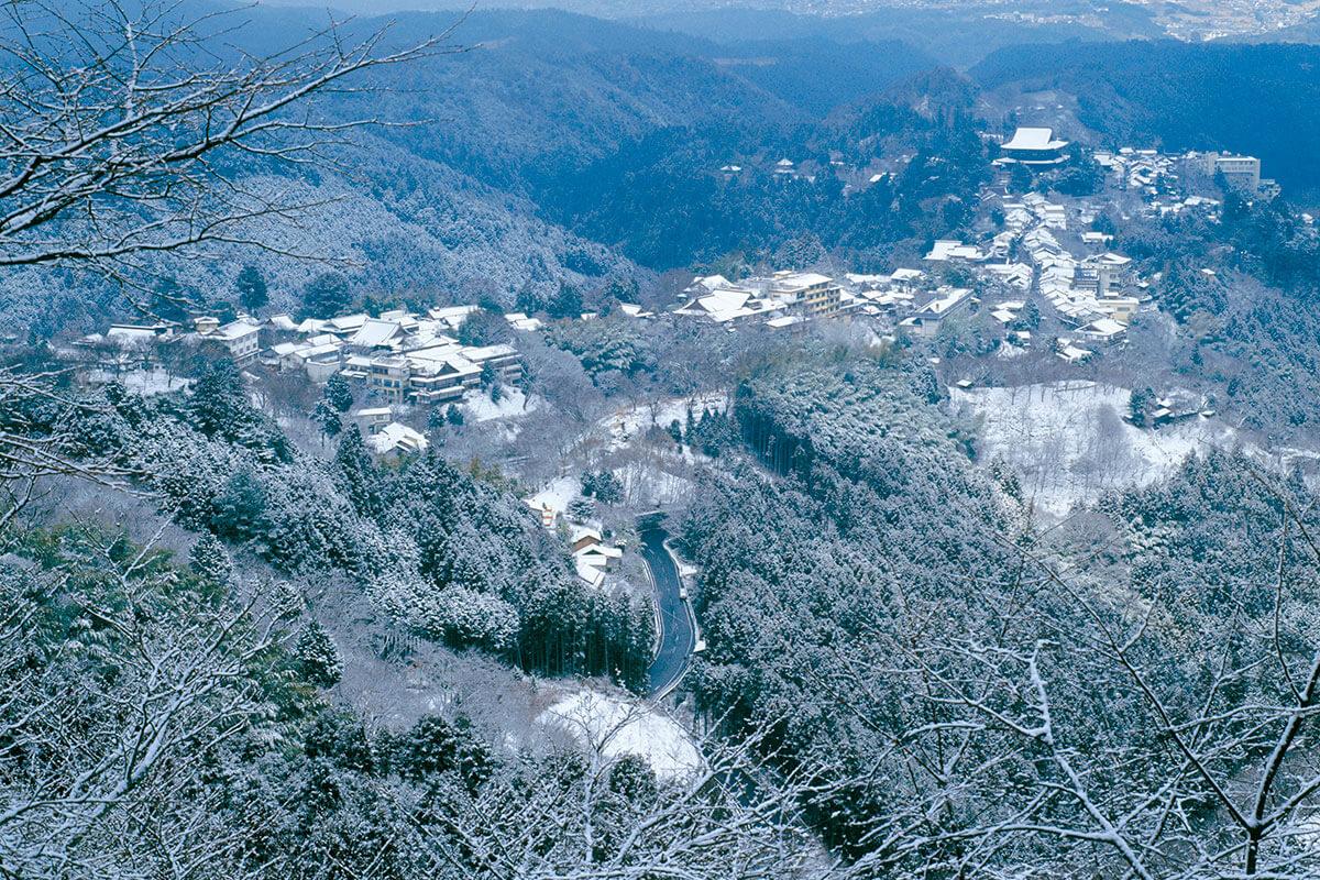 吉野山 上千本の雪景色(2008年)