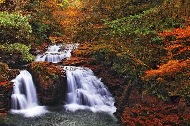 三重県のハイキングスポット「赤目四十八滝」で紅葉を楽しもう!