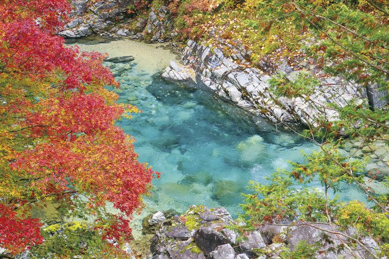 透き通るエメラルドグリーンがまぶしい!! 長野県大桑町「阿寺渓谷」で清流を楽しもう!