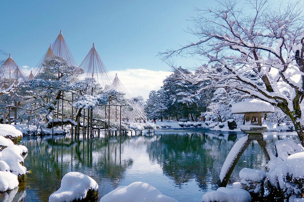 兼六園 雪吊