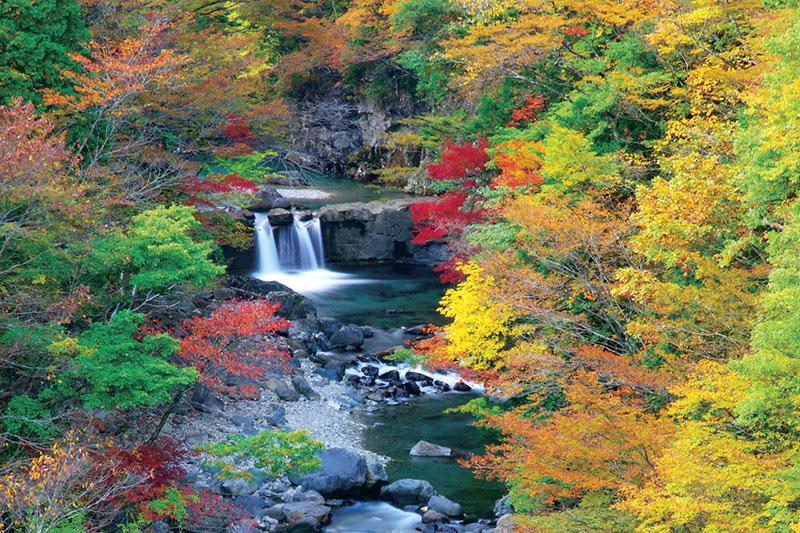 紅葉を迎える付知峡