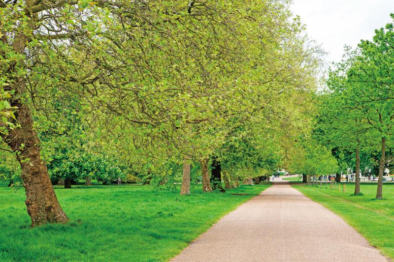 ロンドンにある王立公園「ハイド・パーク」は都会の中にあるオアシス!! その公園の魅力をご紹介します!
