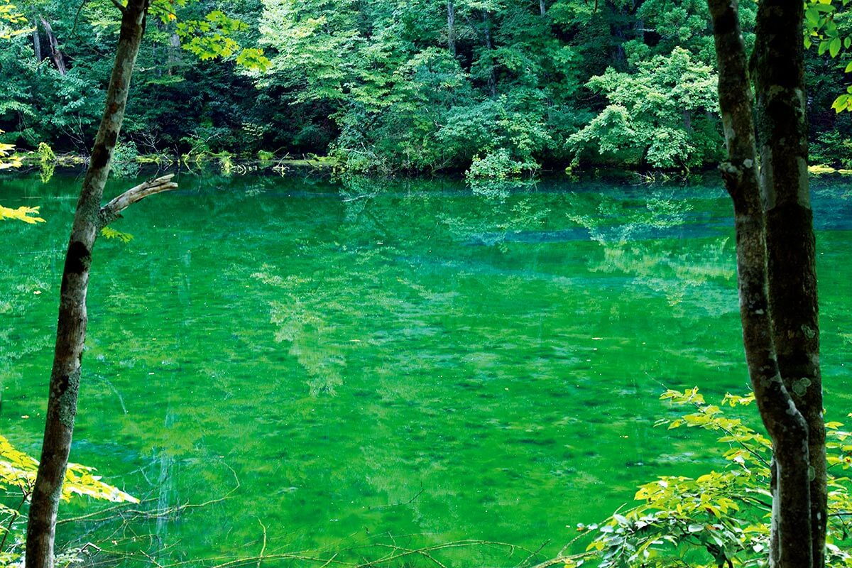 新潟県津南町・「龍ヶ窪の池」
