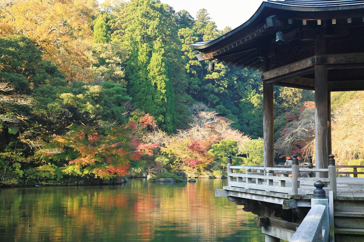 成⽥⼭公園