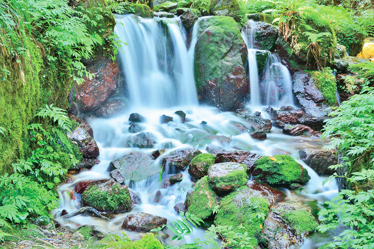 若狭瓜割名水公園 瓜割の滝