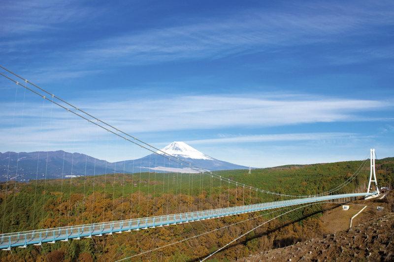 都内から日帰りOK! 静岡県の三島・沼津で絶景やグルメを堪能しよう