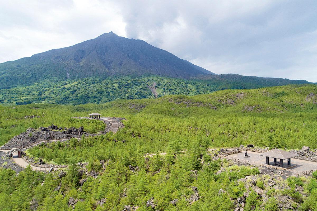 桜島 有村溶岩展望所