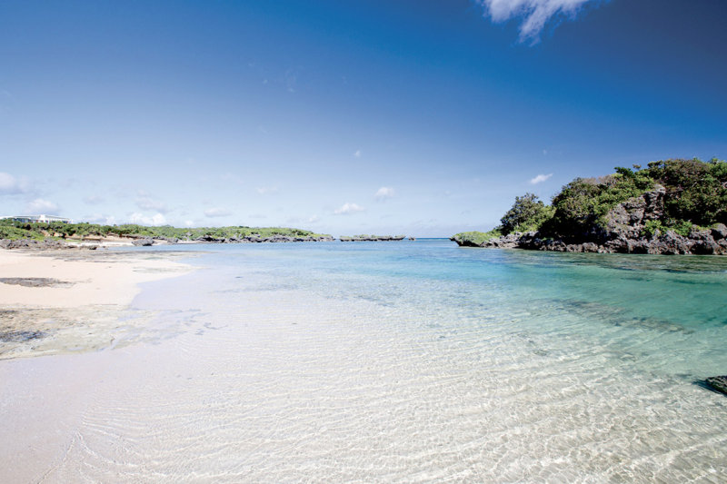 「東洋のガラパゴス」沖縄・西表島!! 海、川、森をアクティビティで満喫しよう