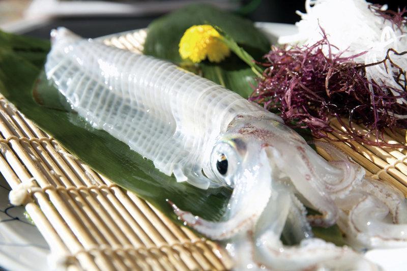 佐賀県唐津市のイカの街「呼子(よぶこ)」で旬のイカを食べよう!