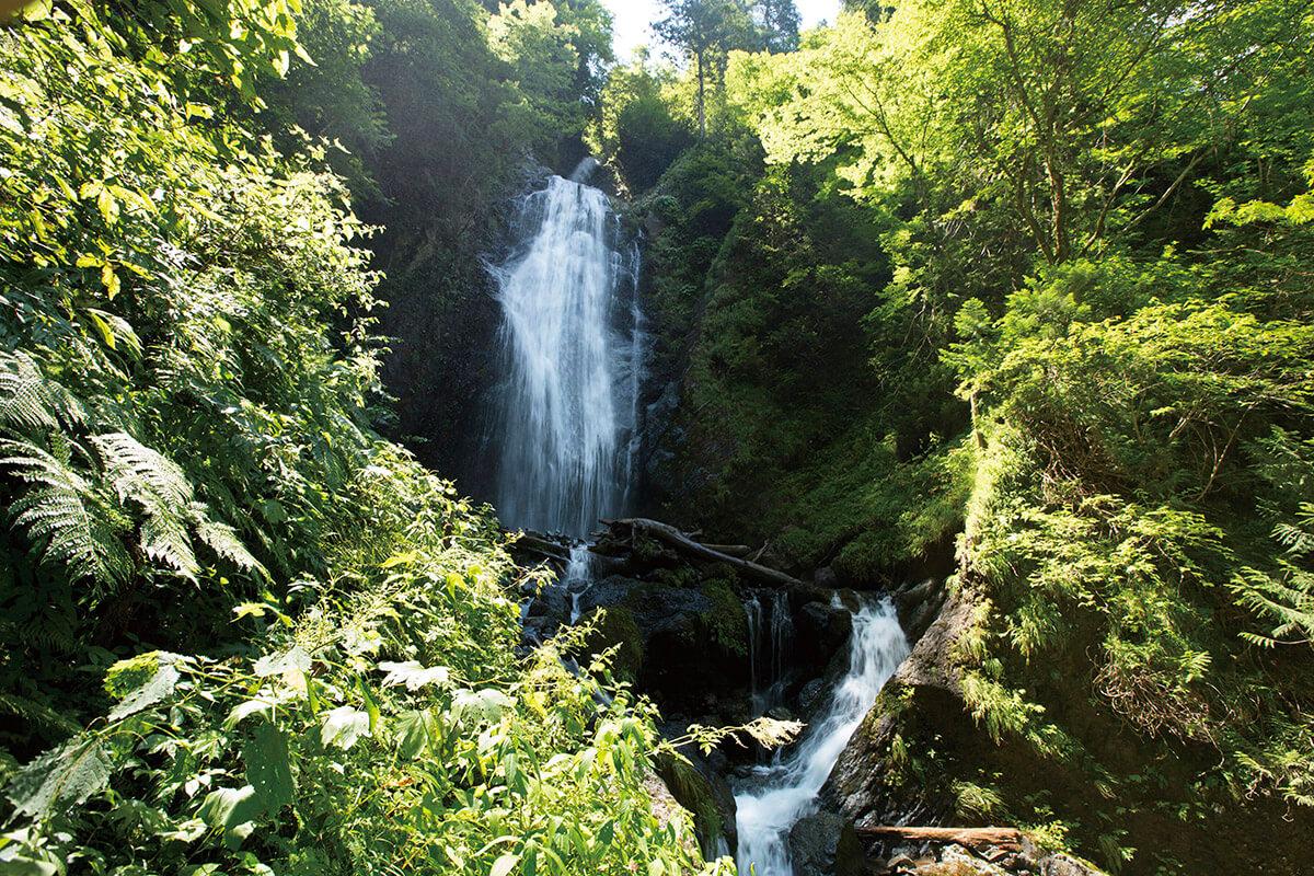 抱返り渓谷 回顧の滝