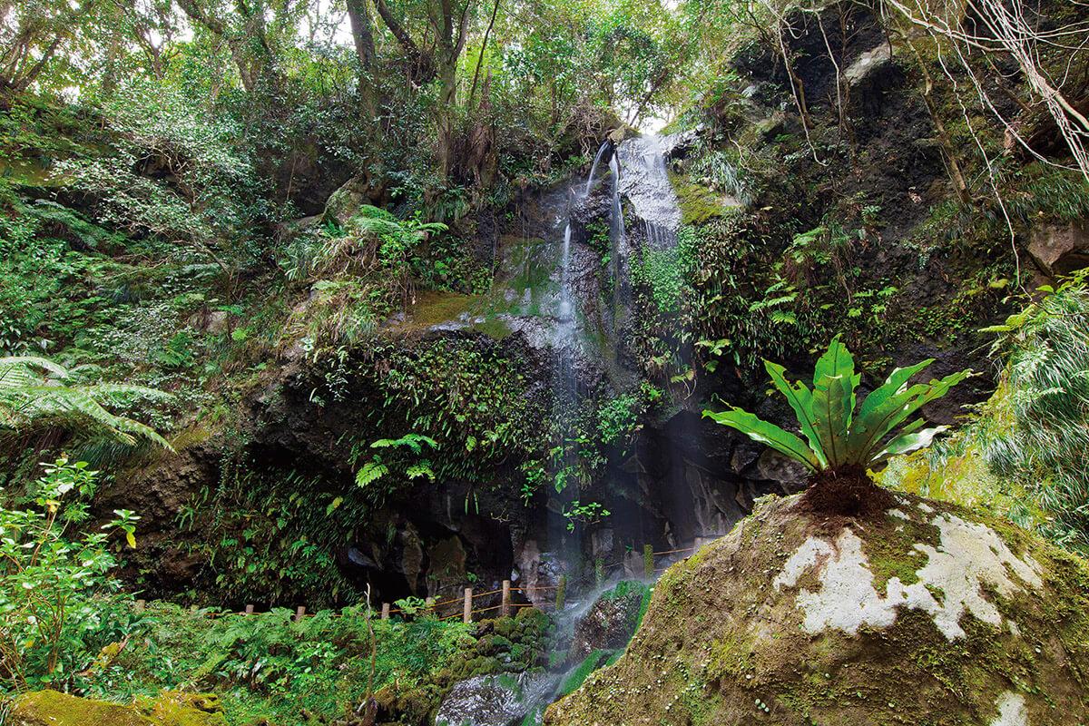 八丈島 裏見の滝