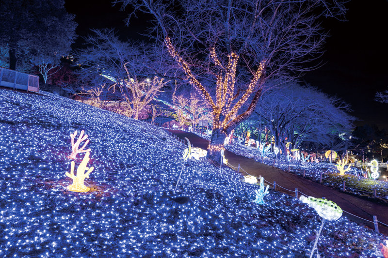 関東最大級の600万球の輝き! 神奈川県「さがみ湖イルミリオン」で光の大パノラマに感動!
