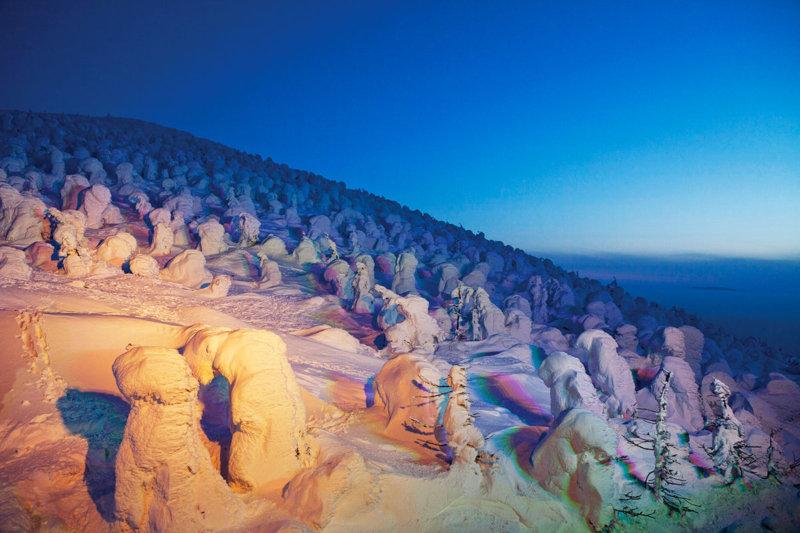 冬の大自然が幻想的な世界に!! 山形県の蔵王ロープウェイで「樹氷ライトアップ」を見に行こう