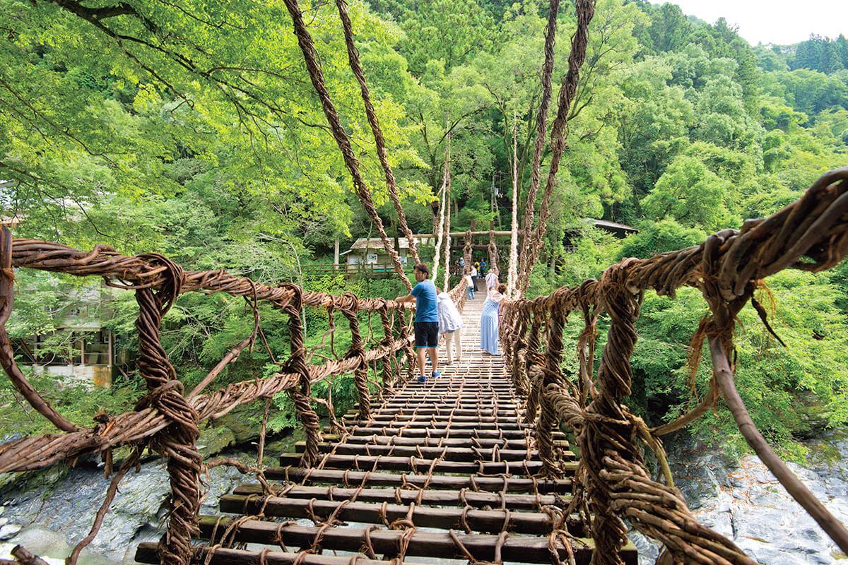 夏の祖谷のかずら橋