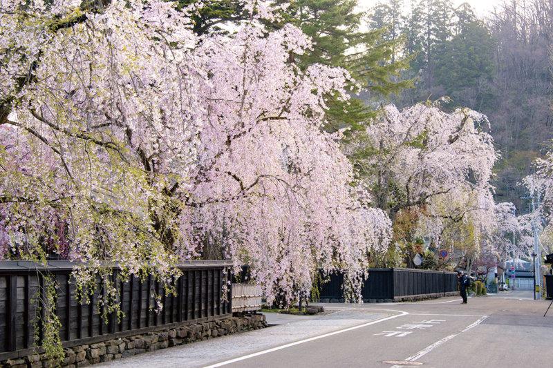 秋田県のおすすめ観光スポット3選!! 風情ある町並みや美しい自然に癒やされませんか?
