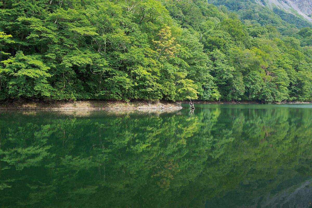十二湖 鶏頭場の池