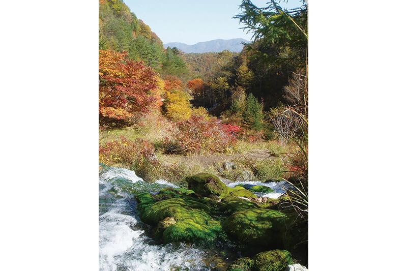10月の様子(紅葉) 写真提供:中之条町観光協会