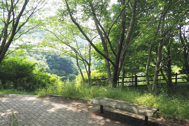 加茂ゆらりんこ橋にある公園 photo by マッキー