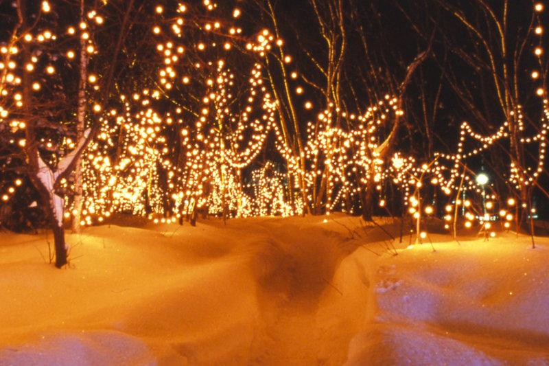 北海道・川湯温泉の「ダイヤモンドダスト in KAWAYU」で幻想的なライトアップを楽しもう