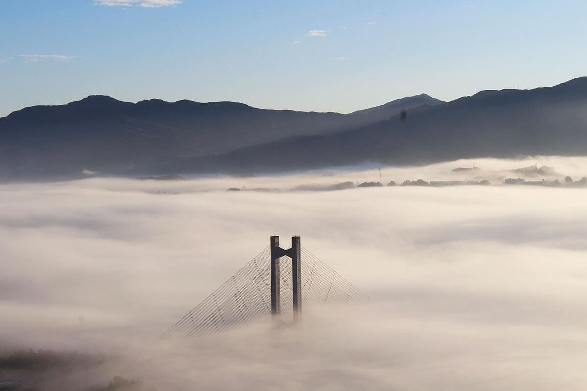 秩父ミューズパーク 天空の橋