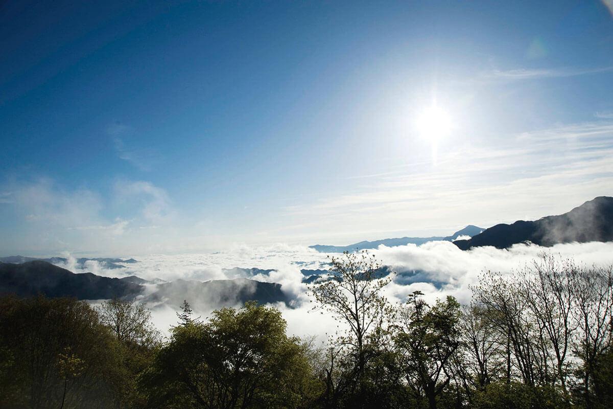 三峯神社 雲海