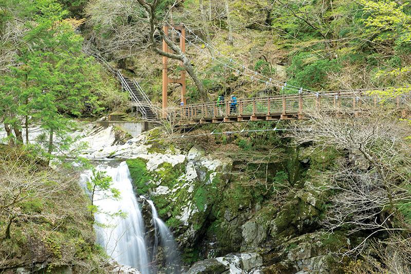 みたらい渓谷 遊歩道 みたらい滝