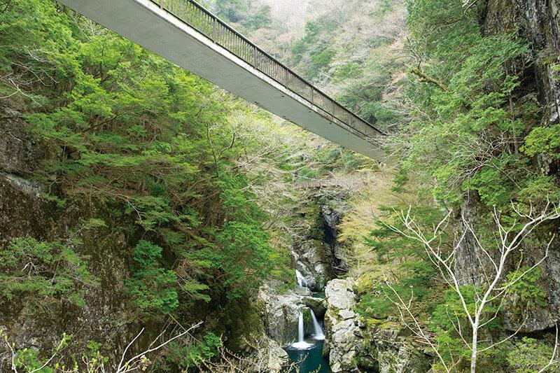 みたらい渓谷遊歩道・哀伝橋