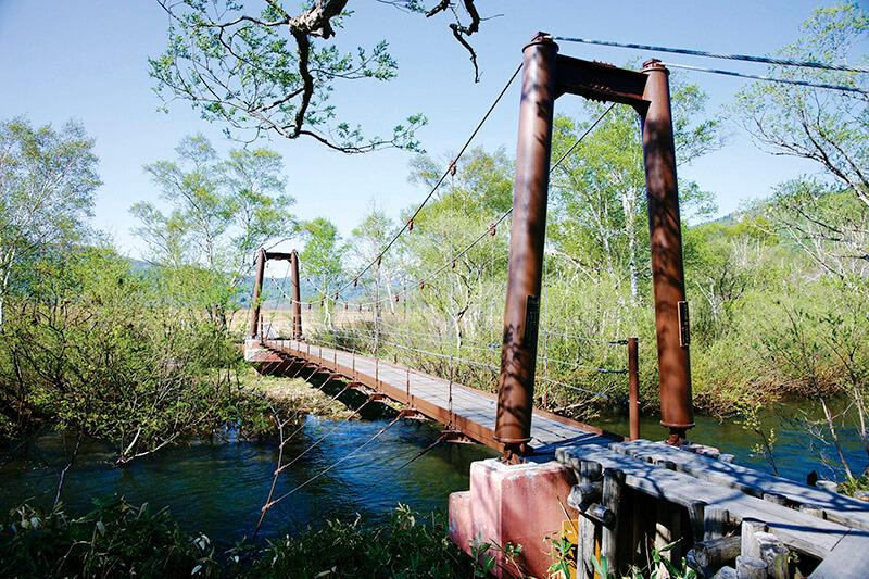 尾瀬ヶ原 ヨッピ吊橋