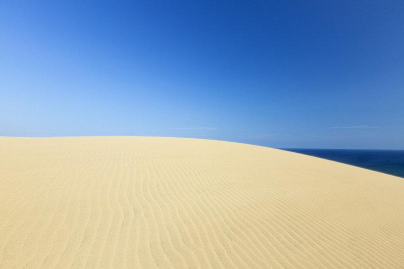 鳥取県に行くなら絶対行きたい観光地「鳥取砂丘」! 絶景アクティビティにらくだも乗れちゃう!