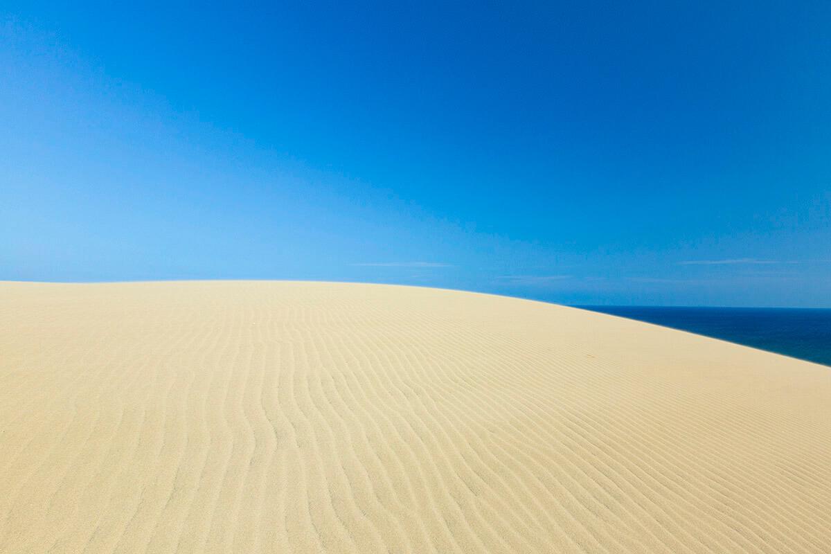 日中の鳥取砂丘