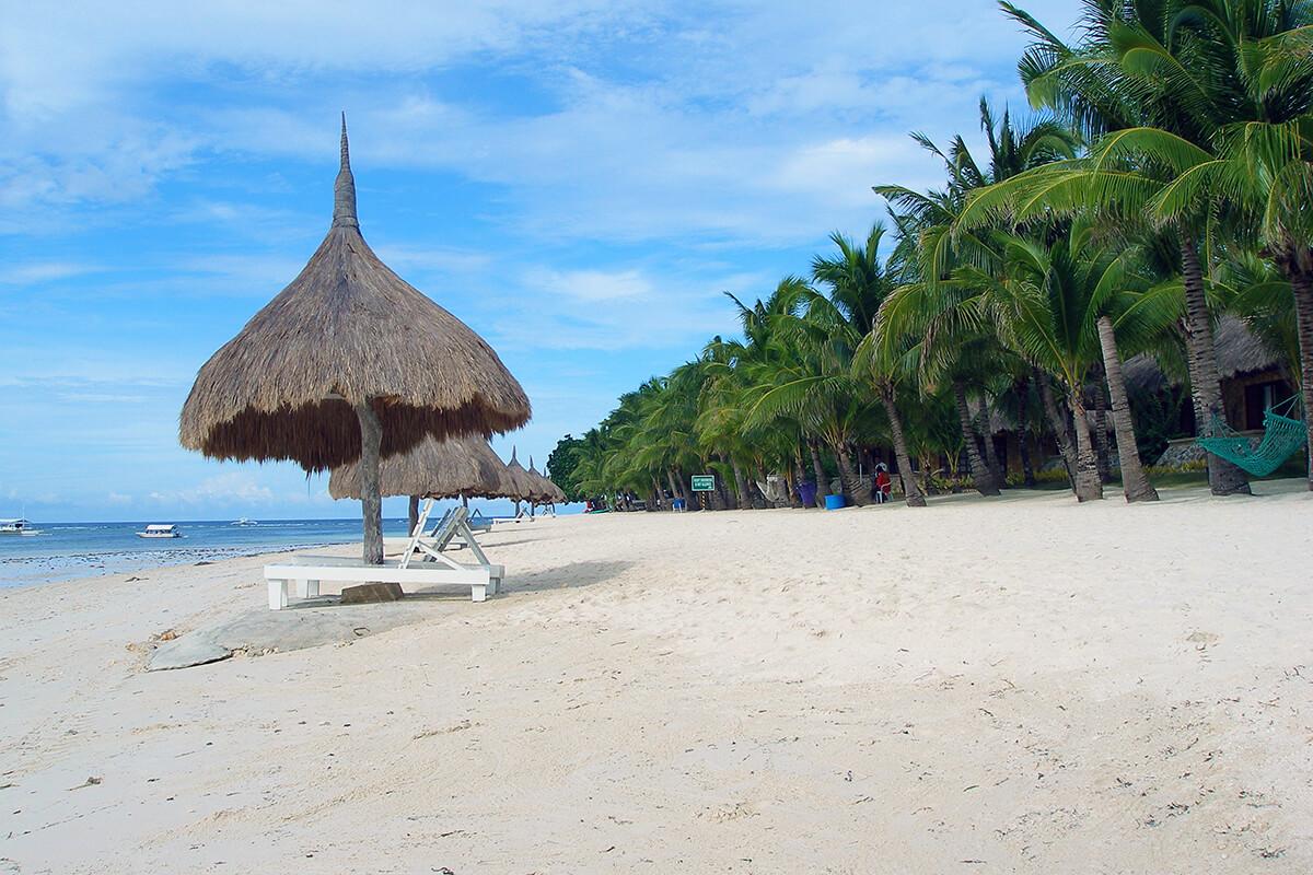 フィリピン ボホール島