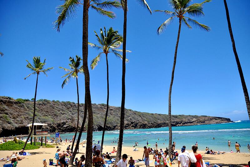 ハワイオアフ島・ハナウマ湾