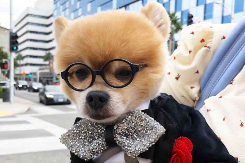 石塚英彦とぐっさんが横浜の弘明寺商店街へ!! 海外コーナーはアメリカ・ロサンゼルスで数々のオシャレさんと出会う!!