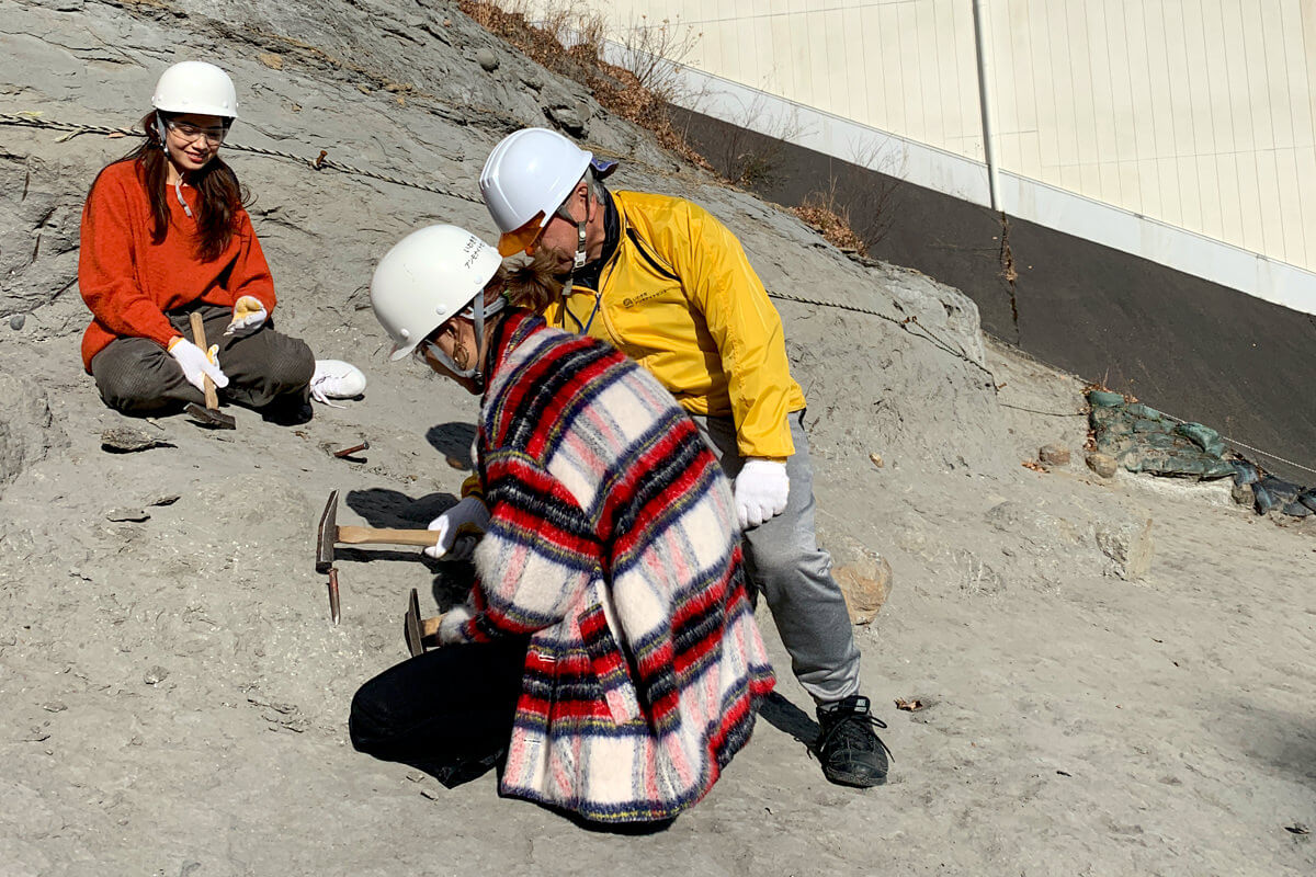 いわき市アンモナイトセンターで化石発掘体験 ©TBS